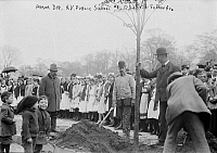0120863 © Granger - Historical Picture ArchiveNEW YORK: ARBOR DAY, 1908.   Planting trees on Arbor Day at New York Public School #4 at 173rd Street and Fulton Avenue, Bronx, New York City. Photograph, 1908.