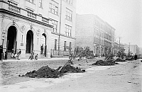 0120870 © Granger - Historical Picture ArchiveNEW YORK: ARBOR DAY, 1908.   Trees ready to be planted on Arbor Day, outside Public School #4 at 173rd Street and Fulton Avenue in the Bronx, New York City, 1908.