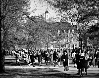 0054891 © Granger - Historical Picture ArchiveUNIVERSITY OF ILLINOIS.   The campus of the University of Illinois at Urbana. Photograph, c1965.