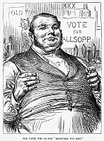0093232 © Granger - Historical Picture ArchiveALLSOPP VOTER, 1880.   'The voter who is for
