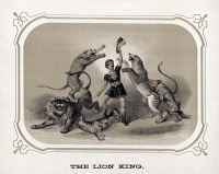 0623889 © Granger - Historical Picture ArchiveCIRCUS: LION TAMER, c1872.   'The Lion King.' A performer standing among a lion, a tiger, two wolves, and a leopard, while holding a large piece of beef. Lithograph, American, c1872.