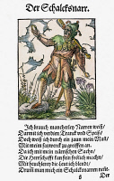 0104605 © Granger - Historical Picture ArchiveJESTER, 1568.   Woodcut, 1568, by Jost Amman.