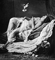 0097377 © Granger - Historical Picture ArchiveRECLINING NUDE WITH BIRD.   Daguerreotype, c1850, from a stereograph view.