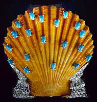 0106339 © Granger - Historical Picture ArchiveJEWELED SCALLOP SHELL.   Scallop shell set with turquoises and diamonds. Made by Fulco di Verdura, early 1950s.