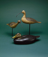 0409409 © Granger - Historical Picture ArchiveBIRD DECOYS, c1920-c1935.   Sickle-billed curlew made at the Mason Factory in Detroit, Michigan c1925. Black duck made by Charles E. 'Shang' Wheeler in Stratford, Connecticut c1935. Dowitcher made by A. Elmer Crowell in Harwich, Massachusetts c1920.