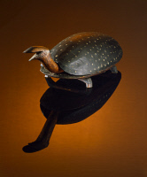 0409421 © Granger - Historical Picture ArchiveFOOTSTOOL, c1850.   Wooden footstool in the form of a smiling spotted turtle, artist unknown. Footstool, c1850.