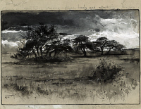 0622681 © Granger - Historical Picture ArchiveFENN: THORN-TREES, c1887.   'Thorn-trees near Niagara.' Wash drawing by Harry Fenn, c1887.