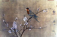 0064730 © Granger - Historical Picture ArchiveCHINA: PARAKEET ON TREE.   'Five Colored Parakeet on Blossoming Apricot Tree.' Painted silk handscroll by Emperor Hui Tsung, Sung Dynasty, c1115.