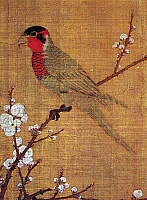 0123726 © Granger - Historical Picture ArchiveCHINA: PARAKEET.   Detail from 'Five Colored Parakeet on Blossoming Apricot Tree,' a painted silk handscroll by Emperor Hui Tsung, Sung Dynasty, c1115.