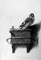 0124153 © Granger - Historical Picture ArchiveFABRITIUS: THE GOLDFINCH.   Oil on canvas by Carel Fabritius, 1654.