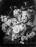0124220 © Granger - Historical Picture ArchivePETER FAES: STILL LIFE.   Oil on wood by the Flemish painter Peter Faes (1750-1814).