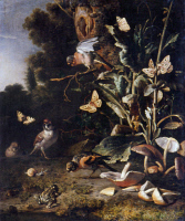 0350807 © Granger - Historical Picture ArchiveHONDECOETER: NATURE, 1668.   'Birds, Butterflies and a Frog Among Plants and Fungi.' Oil on canvas by Melchior d'Hondecoeter, 1668. RESTRICTED OUTSIDE US.