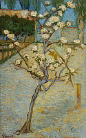 0433494 © Granger - Historical Picture ArchiveVAN GOGH: PEARTREE, 1888.   'Small Peartree in Blossom.' Oil on canvas, Vincent van Gogh, April 1888.