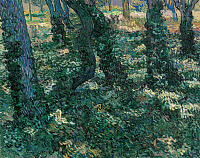 0433676 © Granger - Historical Picture ArchiveVAN GOGH: UNDERGROWTH.   Oil on canvas, Vincent van Gogh, July 1889.
