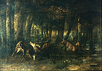 0040345 © Granger - Historical Picture ArchiveCOURBET: STAGS, 1861.   Gustave Courbet: Fighting Stags. Oil on canvas, 1861.