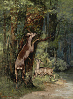 0433840 © Granger - Historical Picture ArchiveCOURBET: DEER, 1868.   'Deer in the Forest.' Oil on canvas, Gustave Courbet, 1868.