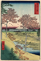 0125089 © Granger - Historical Picture Archive36 VIEWS OF MOUNT FUJI, 1858. Twilight Hill at Meguro in the Eastern Capital. Image 10 of '36 Views of Mount Fuji.' Vertical series by Utagawa Hiroshige, 1858.
