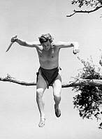 0013650 © Granger - Historical Picture ArchiveTARZAN IN EXILE, 1939.   Alos known as 'Tarzan Finds a Son.' Johnny Weissmuller in the title role of Tarzan.