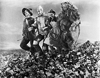 0122888 © Granger - Historical Picture ArchiveWIZARD OF OZ, 1939.   From left: Ray Boger as the Scarecrow, Jack Haley as the Tin Woodman, Judy Garland as Dorothy and Bert Lahr as the Cowardly Lion in Metro-Goldwyn-Mayer's film 'The Wizard of Oz,' 1939.