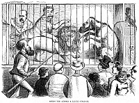 0076094 © Granger - Historical Picture ArchiveWILD MEN OF WALL STREET.   'Giving the animals a little sunlight.' Published following Black Friday (September 24), this American newspaper cartoon of 1869 shows Charles A. Dana of The Sun newspaper from New York exposing to the public view the 'wild men' of Wall Street, chief among whom are Jim Fisk, Daniel Drew, and Jay Gould.