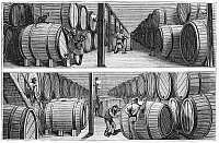 0268381 © Granger - Historical Picture ArchiveNEW YORK: WINE INDUSTRY.   Wine cellars of Werner and Company on Park Place in New York City. Engraving, American, 1878.
