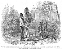 0006977 © Granger - Historical Picture ArchiveCHRISTMAS TREE, c1870.   'So the little fir-tree went off in its wheelbarrow, and tried to sit in it with a jaunty air, as if it was only being taken for a pleasant airing.' Wood engraving, c1870.