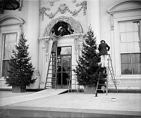 0133727 © Granger - Historical Picture ArchiveWHITE HOUSE: CHRISTMAS, 1939.   Workers decorating the White House with Christmas trees and a wreath. Photograph, 19 December 1939.