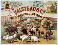 0528597 © Granger - Historical Picture ArchiveAD: MEATPACKING, 1886.   Advertisement for Halstead and Company, beef and pork packers, lard refiners, etc., at 194 to 202 Forsyth Street in New York City. Lithograph, 1886.