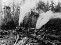 0120040 © Granger - Historical Picture ArchiveLUMBERJACKS, 1910.   Lumberjacks using a steam-powered logging machine and railroad cars to move logs at Thomas Lake logging camp, Minnesota. Photographed on 21 April 1910.