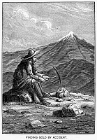 0003005 © Granger - Historical Picture ArchiveGOLD MINER, 19th CENTURY.   Wood engraving, American, 19th century.
