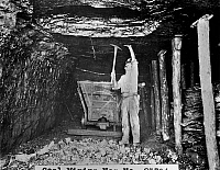 0118001 © Granger - Historical Picture ArchiveCOAL MINER.   American coal miner at work. Photograph, early 20th century.