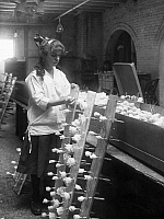 0096149 © Granger - Historical Picture ArchiveCHILD LABOR, c1915.   A young girl works at a factory assembling artificial roses. Photograph, American, c1915.
