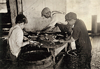 0167319 © Granger - Historical Picture ArchiveHINE: CHILD LABOR, 1911.   Three young workers cutting sardines with large sharp knives at the Seacoast Canning Co. in Eastport, Maine. Photograph by Lewis Hine, August 1911.