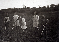 0176046 © Granger - Historical Picture ArchiveHINE: HOEING CORN, 1915.   Group of children hoeing corn on their father's farm near Menomonee Falls, Wisconsin. Photograph by Lewis Hine, July 1915.