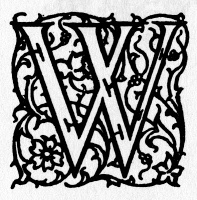 0045181 © Granger - Historical Picture ArchiveINITIAL 'W', c1900.   A decorative initial 'W' with arabesque design, English, c1900.