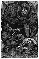 0004859 © Granger - Historical Picture ArchivePOE: RUE MORGUE, 1841.   Wood engraving by Fritz Eichenberg for a 1944 edition of Edgar Allan Poe's 'The Murders in the Rue Morgue,' first published in 1841.