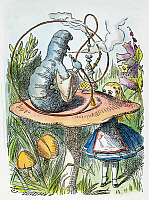 0010948 © Granger - Historical Picture ArchiveALICE IN WONDERLAND, 1865.   Advice from a caterpillar. Illustration by Sir John Tenniel from the first edition of Lewis Carroll's 'Alice's Adventures in Wonderland,' 1865.