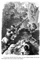 0034422 © Granger - Historical Picture ArchiveLAST OF THE MOHICANS, 1872.  Illustration by Felix Octavius Carr Darley from an 1872 edition of James Fenimore Cooper's 'The Last of the Mohicans.'