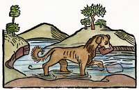 0054588 © Granger - Historical Picture ArchiveAESOP: DOG & SHADOW, 1484.   'The Dog and his Shadow.' Woodcut from 'Les Subtiles Fables D'Esope,' Lyon, 1484.