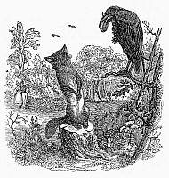 0096444 © Granger - Historical Picture ArchiveAESOP: FOX AND RAVEN.   Wood engraving, mid-19th century, for Aesop's fable 'The Fox and the Raven.'