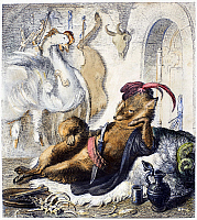 0103769 © Granger - Historical Picture ArchiveREYNARD THE FOX, 1846.   Steel engraving, German, 1846, after Wilhelm von Kaulbach, for an edition of Johann Wolfgang von Goethe's adaptation of the medieval epic 'Reynard the Fox.'