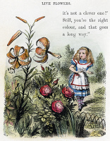 0027145 © Granger - Historical Picture ArchiveCARROLL: LOOKING GLASS.   Alice in the Garden of Live Flowers. Illustration by Sir John Tenniel from the first edition of 'Through the Looking Glass,' 1872.