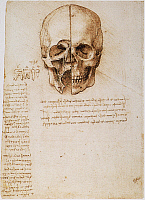 0032681 © Granger - Historical Picture ArchiveLEONARDO: SKULL, 1489.   Pen and ink study by Leonardo da Vinci, 1489, of the human skull.