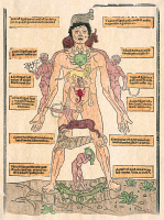 0009637 © Granger - Historical Picture ArchiveBLOODLETTING CHART, 1493.   'The Zodiac Man,' the oldest printed bloodletting chart, showing the astrological signs for bloodletting, or the correspondences between the parts of the body and the Zodiacal regions. Woodcut from Johannes de Ketham's 'Fasciculus Medicinae,' 1493.
