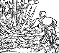 0003887 © Granger - Historical Picture ArchivePLAGUE BONFIRE.   The burning of 'plague-spreaders.' Woodcut, 16th century.