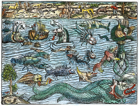 0010520 © Granger - Historical Picture ArchiveSEA MONSTERS, 1550.   Sea monsters inhabiting the north Atlantic and animals found in northern lands. Woodcut from Sebastian Münster's 'Cosmographia,' Basle, 1550.