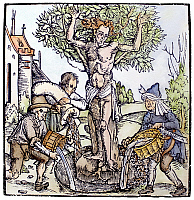 0097559 © Granger - Historical Picture ArchiveTREE OF LIFE, 1515.   Yggdrasil, the Tree of Life in Norse-Teutonic mythology. Woodcut, 1515, by Hans Baldung Grien.