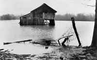 0120232 © Granger - Historical Picture ArchiveTENNESSEE: FLOOD, 1937.   Farmyard covered with flood waters near Ridgeley, Tennessee. Photograph by Walker Evans in February 1937.