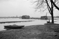 0325129 © Granger - Historical Picture ArchiveTENNESSEE: FLOOD, 1937.   Flooded farmland near Ridgely, Tennessee during the flooding of the Ohio River. Photograph by Edwin Locke, February 1937.