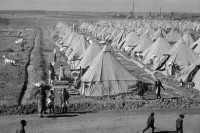 0325262 © Granger - Historical Picture ArchiveARKANSAS: REFUGEE CAMP.   View of the camp for flood refugees in Forrest City, Arkansas. Photograph by Edwin Locke or Walker Evans, March 1937.